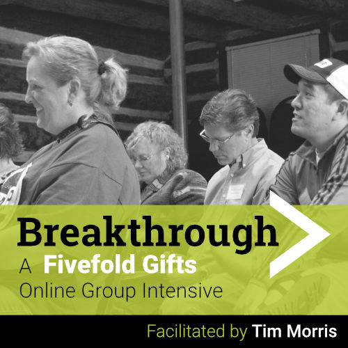 Breakthrough Fivefold APEST Online Intensive